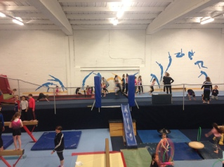 oldbawn-gymnastics