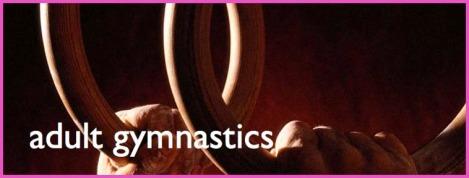 Adult Gymnastics
